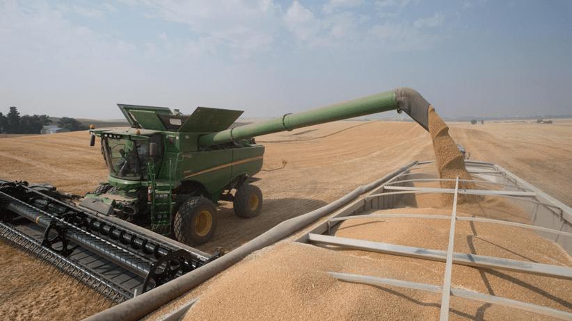 Intervista all'assessore all'Agricoltura ER </br>«I contratti di filiera sono necessari per essere competitivi»