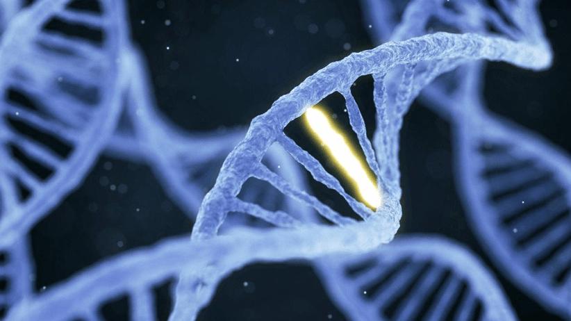 Per la Corte europea gli organismi ottenuti con mutagenesi vanno considerati come Ogm