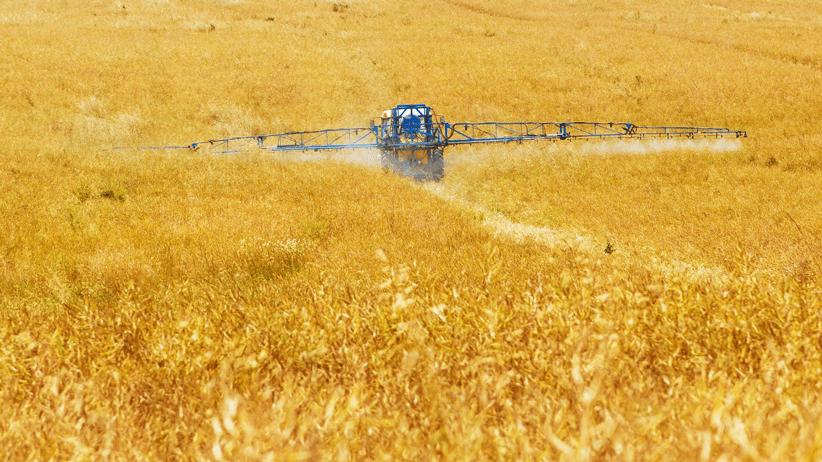 Gli alimenti europei superano a pieni voti l'esame dell'Efsa sui pesticidi