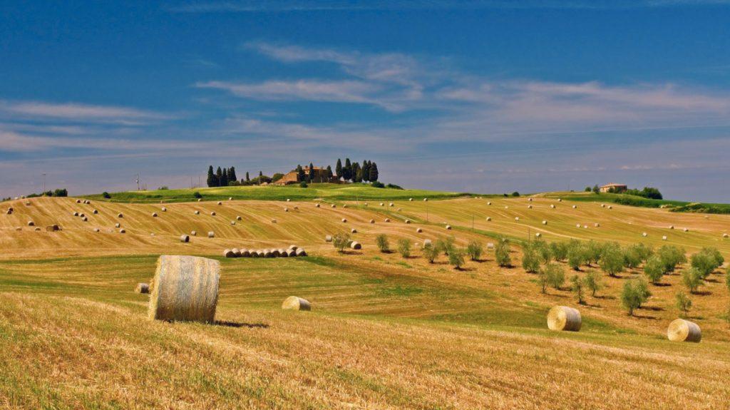 Nubi scure sull'agricoltura europea