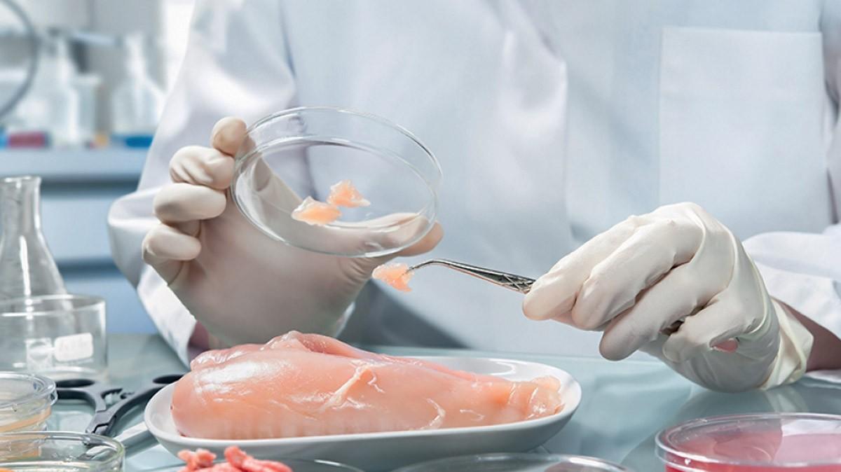 Sistema a tutela dei consumatori dai pericoli chimici negli alimenti: l'Audit della Corte dei Conti Ue