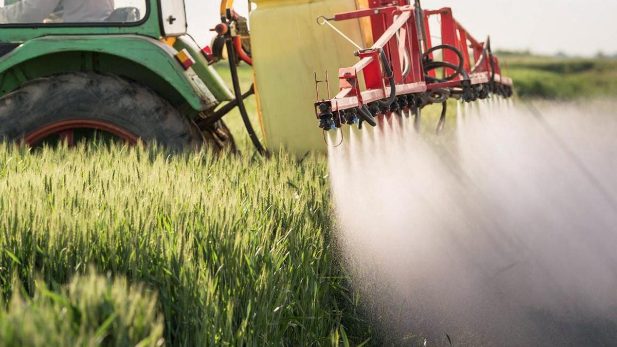 Nuovi livelli massimi di residui di antiparassitari nei prodotti alimentari