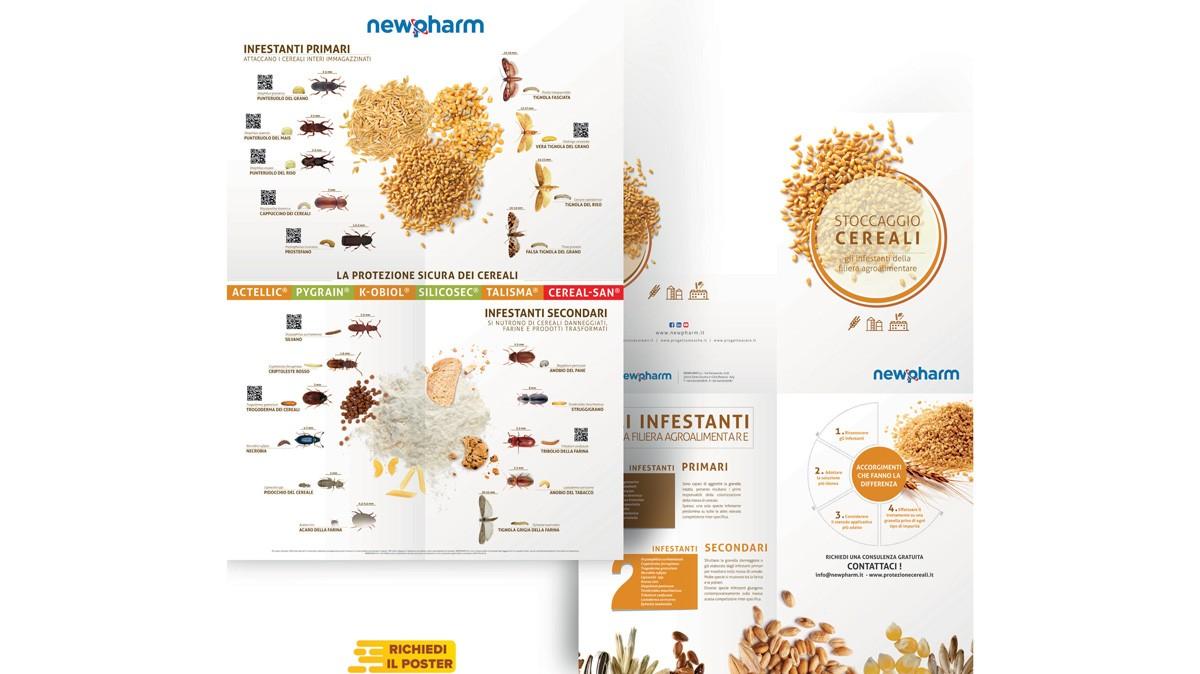 Cereale sano per farine biologiche di alta qualità