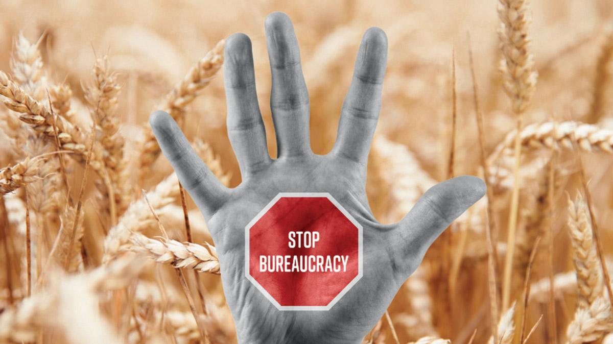 Basta burocrazia, servono soluzioni