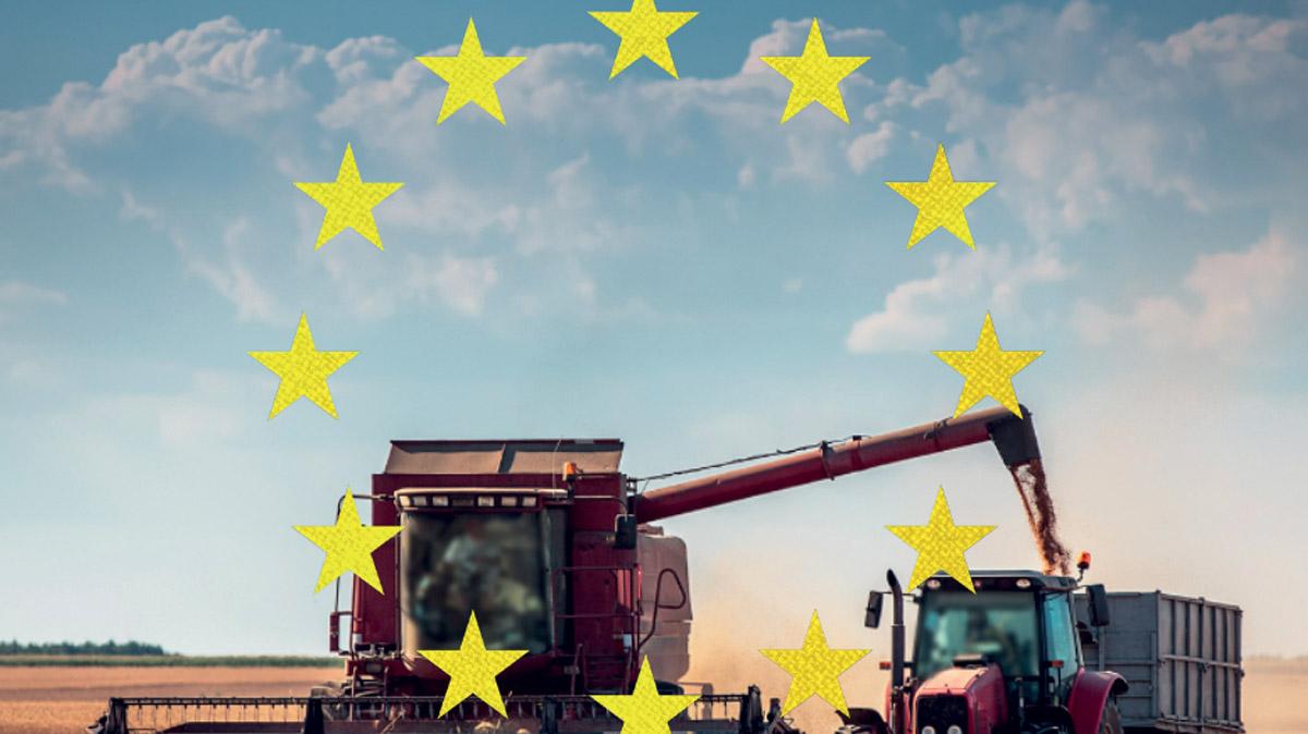 Le lacune legislative sulla circolazione degli alimenti