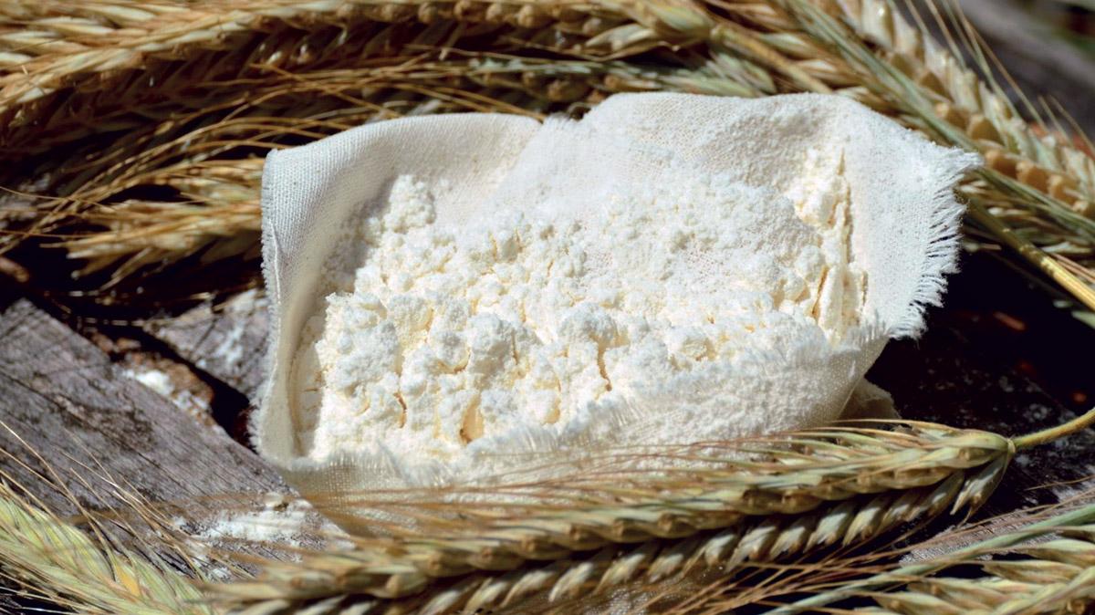 <em>Escherichia coli</em> Ehec: un pericolo emergente nelle farine
