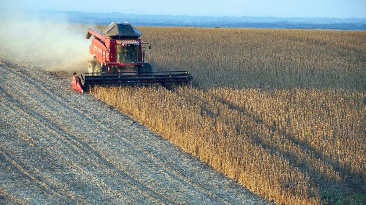 Obiettivo Pac: trend e finalità dell'agroalimentare