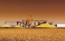 La tempra automatizzata dei cereali (parte II)